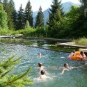 How To Build A Natural Swimming Pool Without Getting Out Of Your Depth!