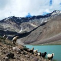 5 Best Places To Visit In The Surreal Valleys Of Lahaul and Spiti
