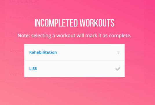 Kayla Itsines Workout Guide Review
